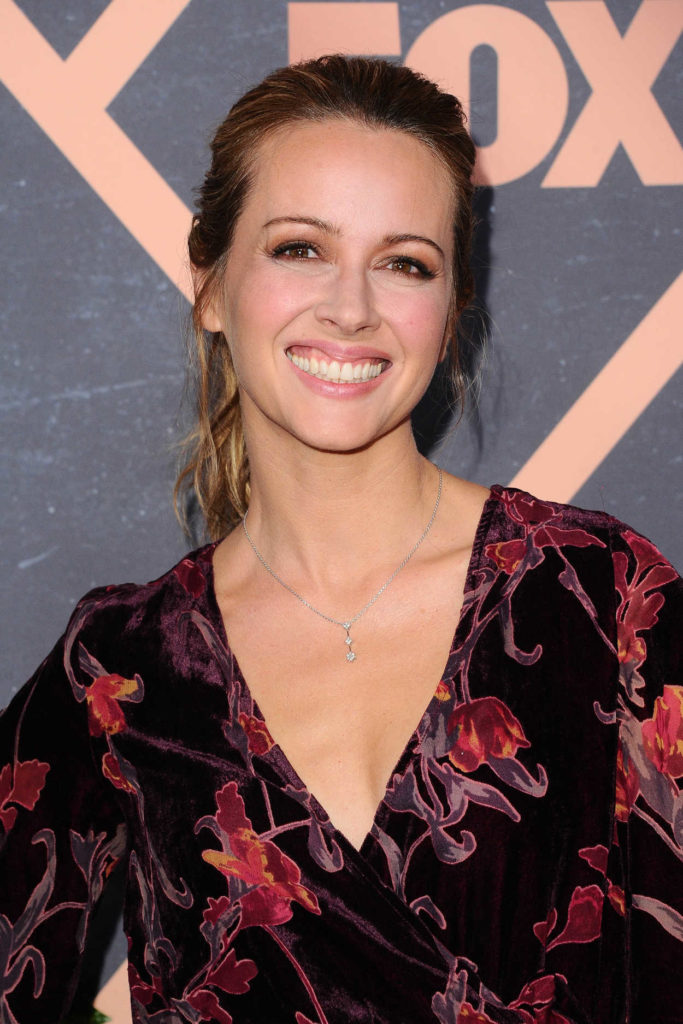 Amy Acker Hair Style Images