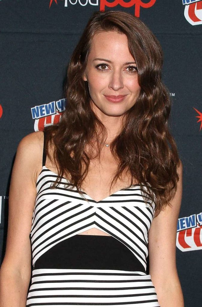 Amy Acker Makeup Pictures