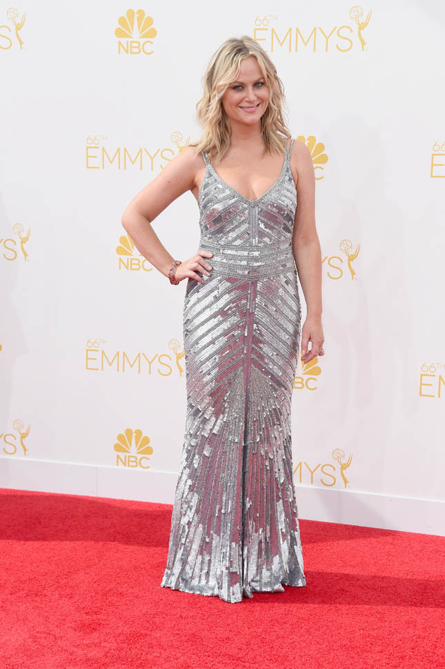 Amy Poehler At Red Carpet Photos