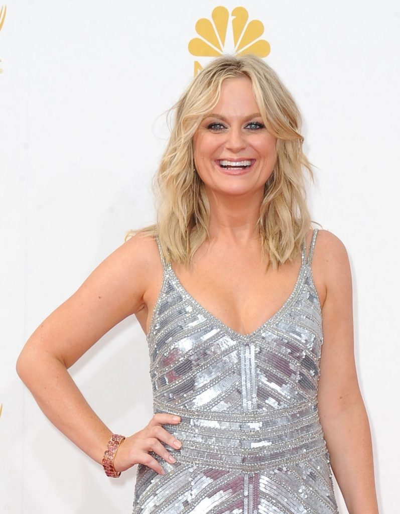 Amy Poehler Fat Images