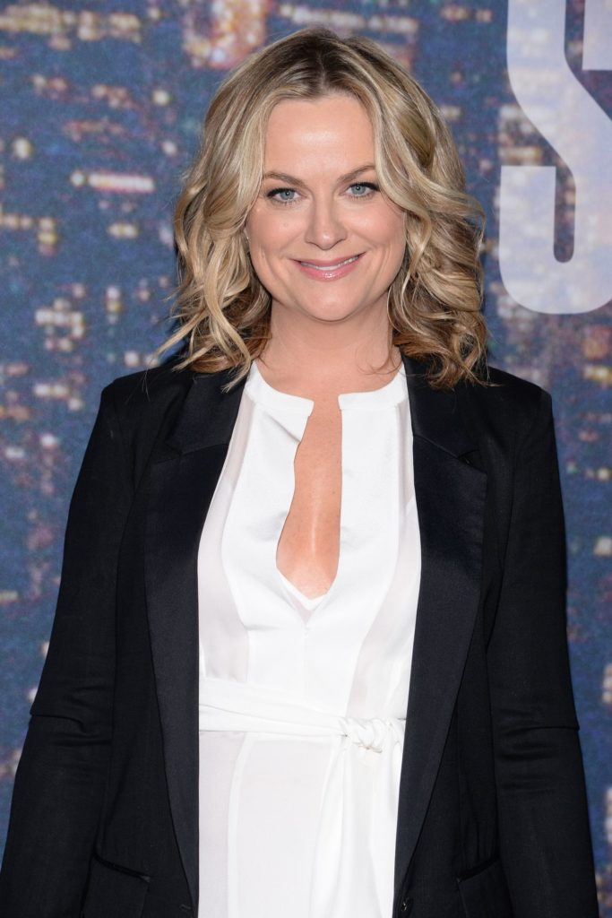 Amy Poehler Makeup PIctures