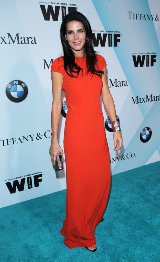 Angie Harmon 2018 Wallpapers