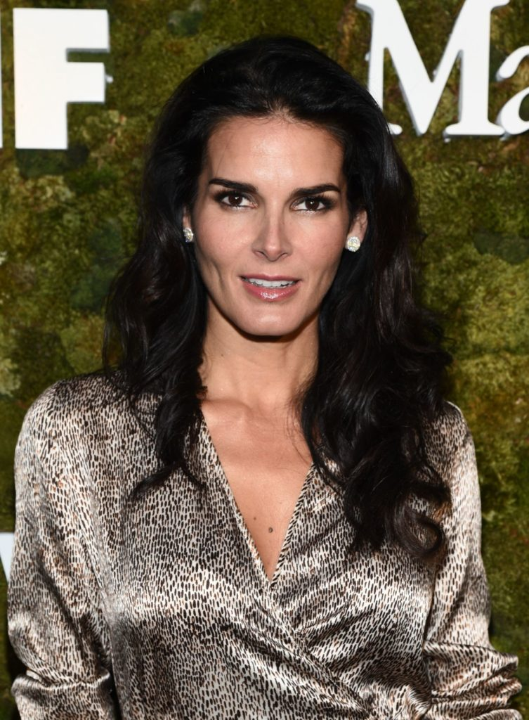 Angie Harmon Hot Images