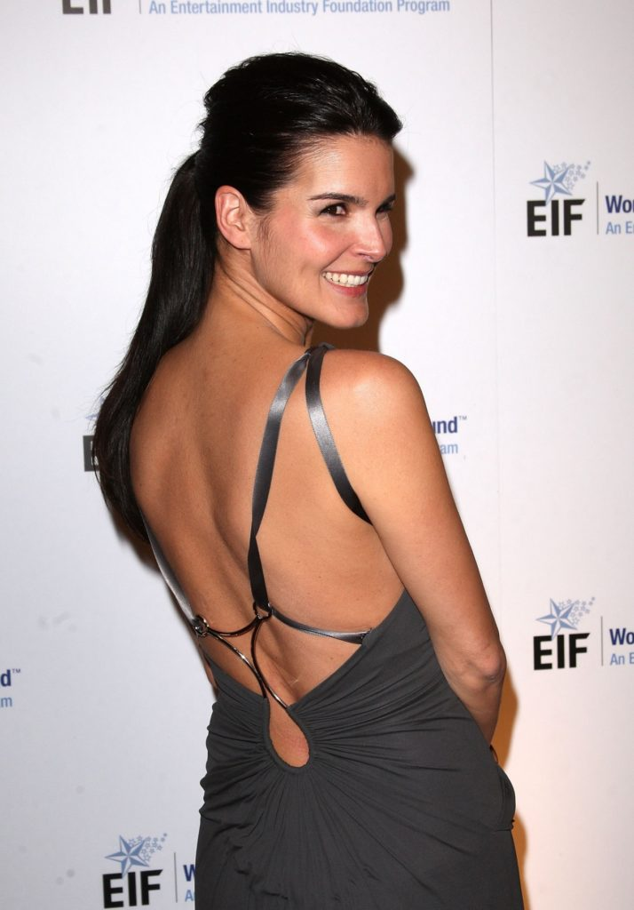 Angie Harmon Lingerie Images