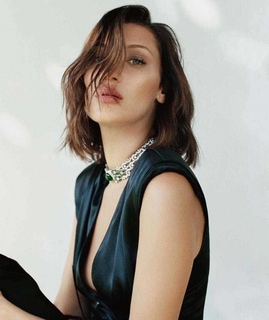 Bella Hadid Boobs Photos