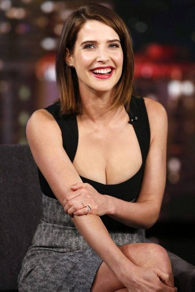 Cobie Smulders Bra Pictures