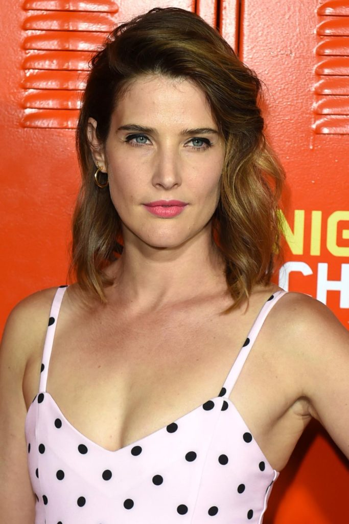 Cobie Smulders Braless Pictures