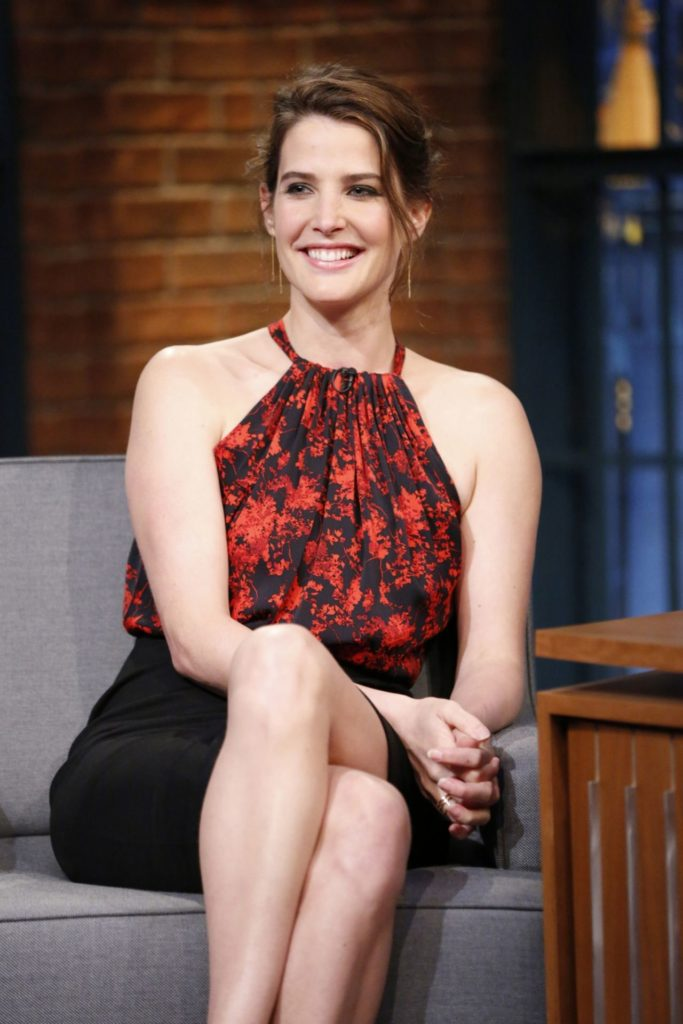 Cobie Smulders Feet Images
