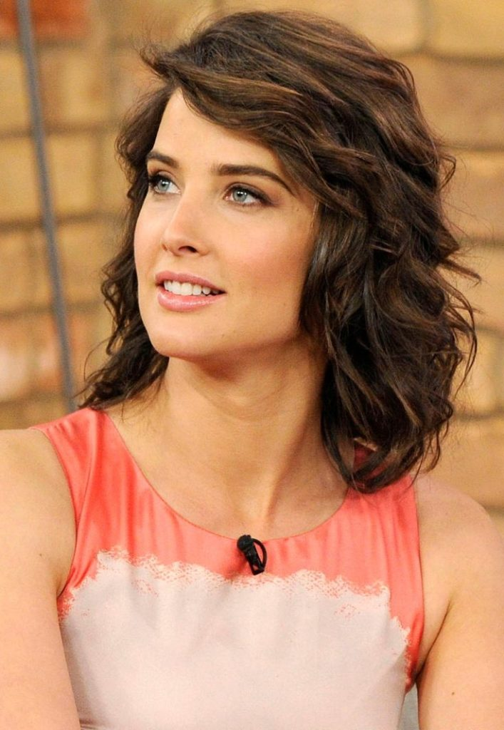 Cobie Smulders Hair Style Pics