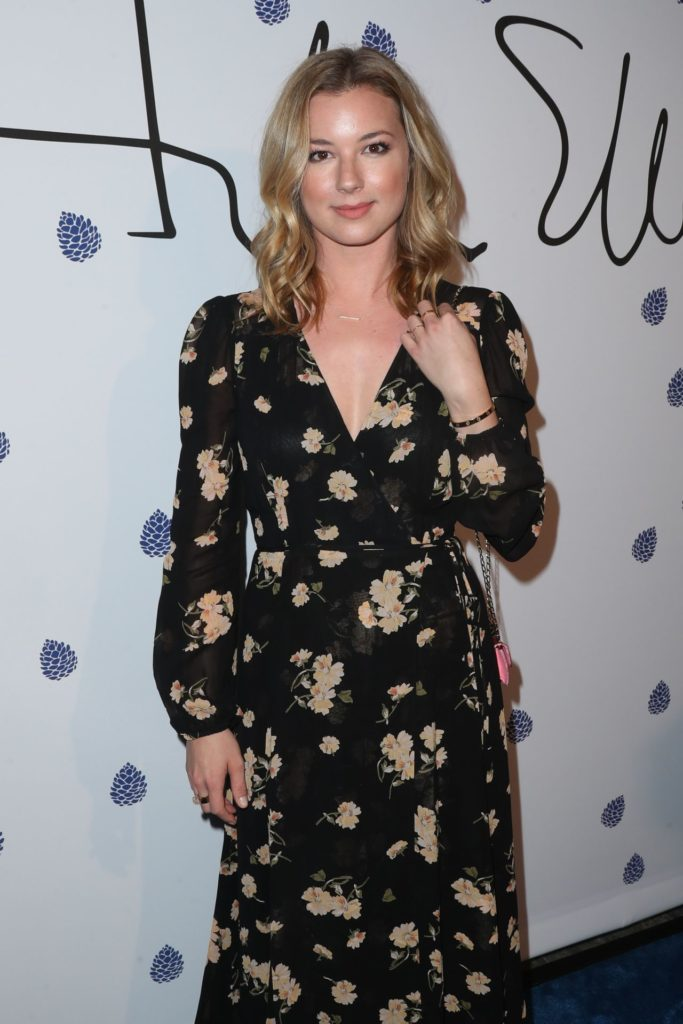 Emily VanCamp Oops Moment Pictures