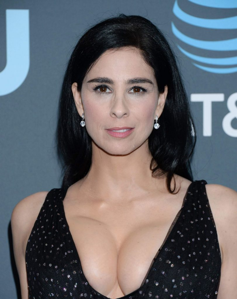 Sarah Silverman Boobs Photos