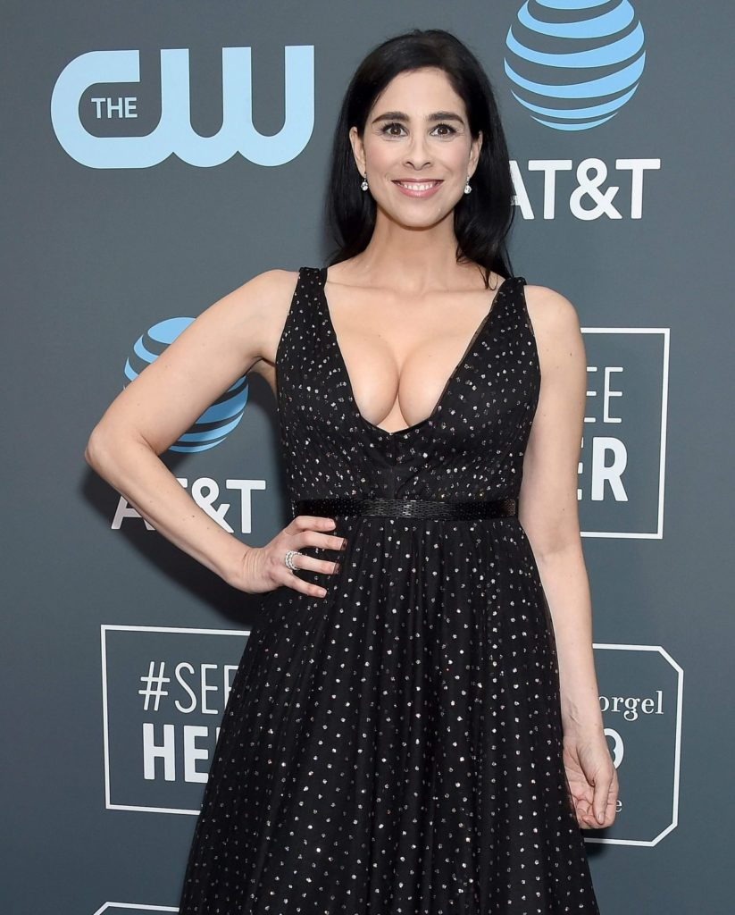 Sarah Silverman Braless Images