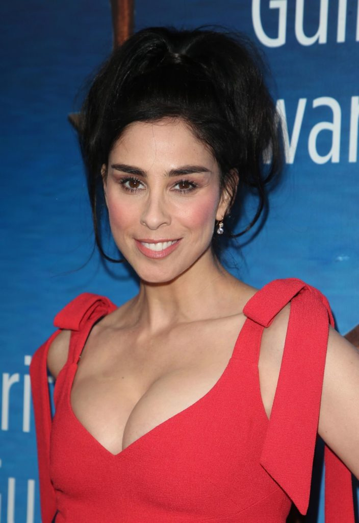 Sarah Silverman Hot Images