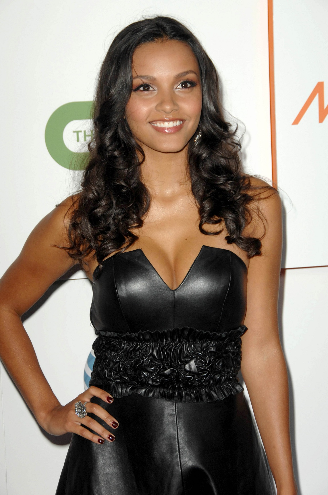 Jessica Lucas Hot Bikini, Boobs And Butt Pictures (49