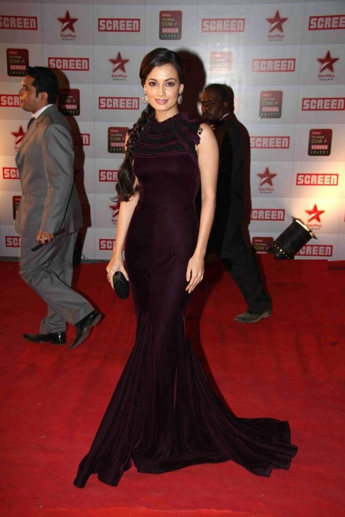 Dia Mirza Hot Sexy Pictures