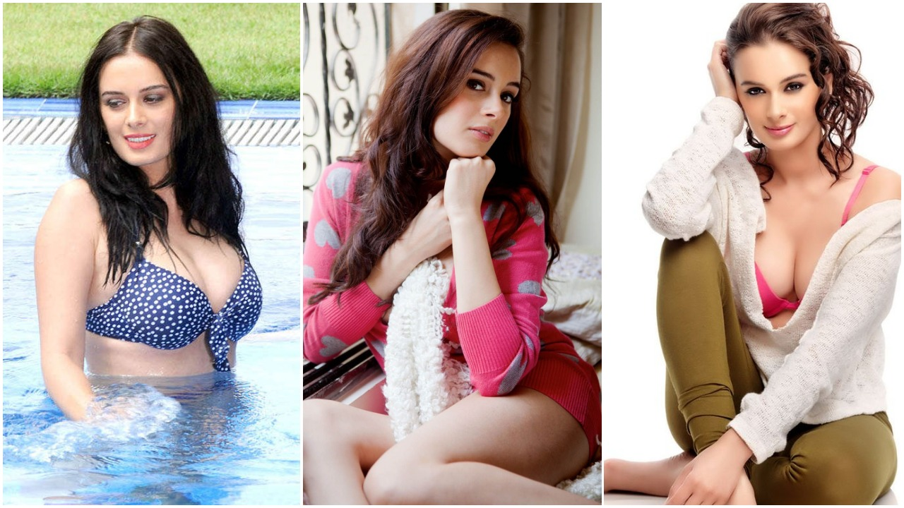 Evelyn Sharma Hot Sexy Bikini Pictures Are Too Much For You To Handle