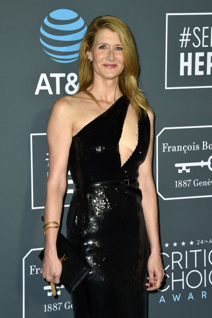Laura Dern Without Bra Images